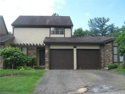 Muskingum County Condo/Townhouse For Sale: 1118 S Slope Bay