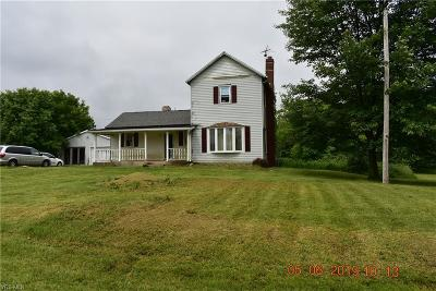 Huron County Single Family Home For Sale: 975 Carroll Road