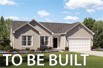 Lorain Single Family Home For Sale: 4300 Weathervane Drive