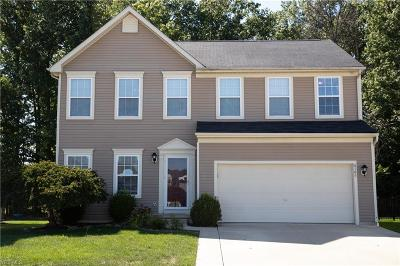 Lorain Single Family Home For Sale: 6166 W Meadow Farm Lane