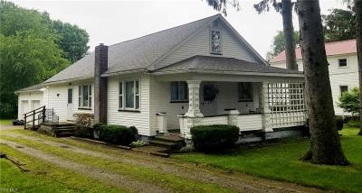 Leetonia Single Family Home For Auction: 285 Walnut Street