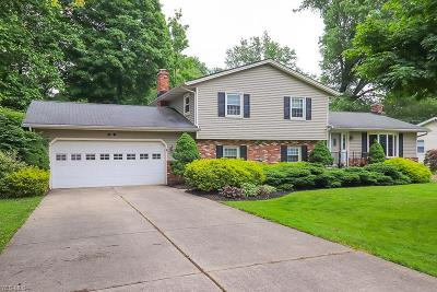 Macedonia Single Family Home Active Under Contract: 8941 Shepard Road