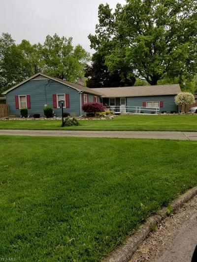 Youngstown Single Family Home Active Under Contract: 221 Reta Lane