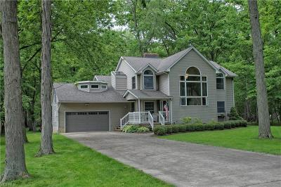 Lake County Single Family Home For Sale: 38755 Wood Road