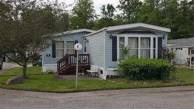 Chardon Single Family Home For Sale: 8 Lois Lane
