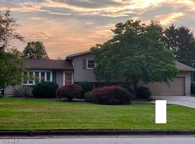 Brewster Single Family Home Active Under Contract: 649 Muskingum Avenue
