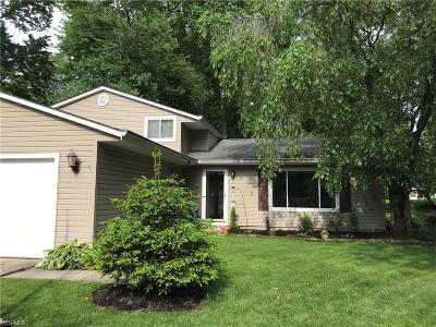 Mentor-On-The-Lake Single Family Home For Sale: 5819 Marine Parkway