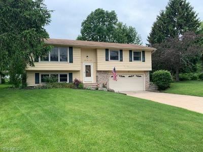 Medina County Single Family Home Active Under Contract: 3915 Claythorne Place