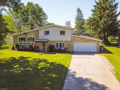 Lorain Single Family Home Active Under Contract: 3711 Valleyview Drive
