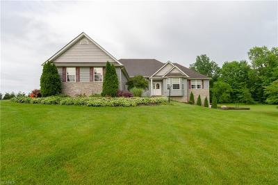 Lorain County Single Family Home Active Under Contract: 16555 Island Road