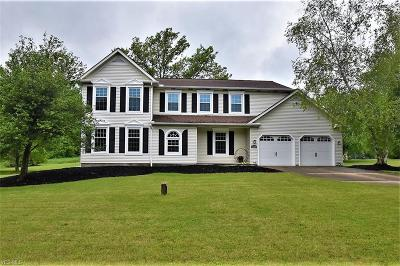 Chagrin Falls Single Family Home For Sale: 16590 Snow Shoe Trail