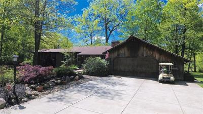 Canfield Single Family Home For Sale: 5063 Shields