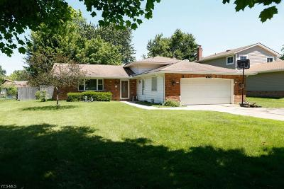 Strongsville Single Family Home For Sale: 18124 Drake Road