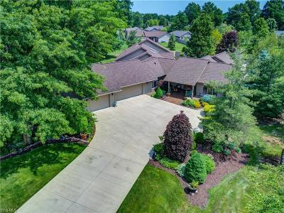 North Ridgeville Single Family Home For Sale: 8895 Riverwood Drive