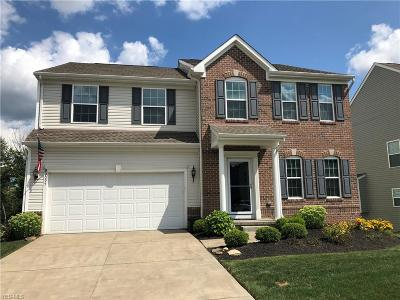 Twinsburg Single Family Home For Sale: 3095 Liberty Ledges Drive