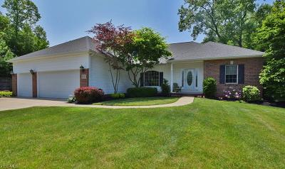 Concord Single Family Home Active Under Contract: 9750 Patriot Court