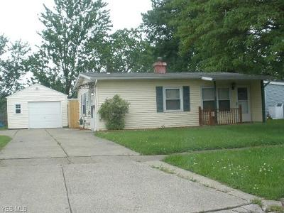 Elyria Single Family Home For Sale: 133 Belmont Avenue