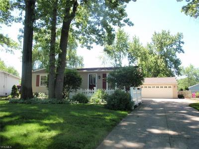 Elyria Single Family Home Active Under Contract: 819 Stanford Avenue