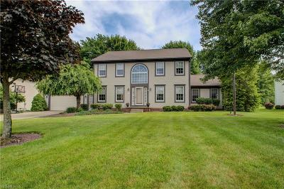 Mahoning County Single Family Home For Sale: 131 Kings Lane