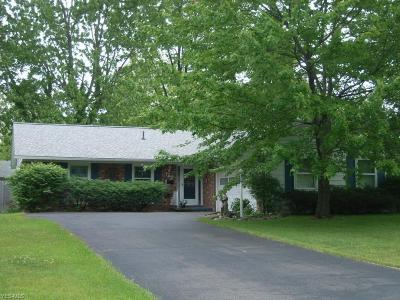 Lorain County Single Family Home For Sale: 142 Georgette Drive