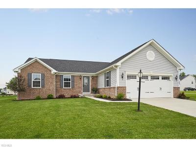 Medina County Single Family Home For Sale: 5525 Coverdale Way