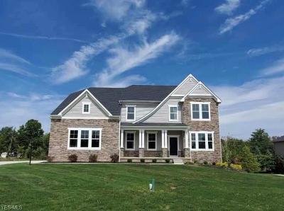 North Royalton Single Family Home For Sale: 5466 River Summit