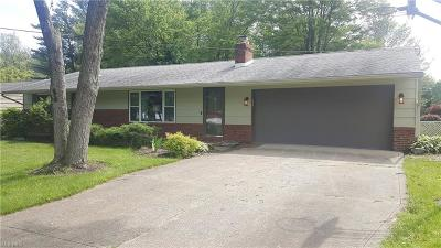 Strongsville Single Family Home For Sale: 11381 Brady Lane