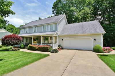 Single Family Home For Sale: 5085 Pine Valley Drive