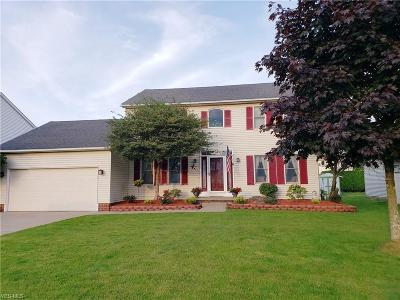Canfield Single Family Home For Sale: 3413 Starwick Drive