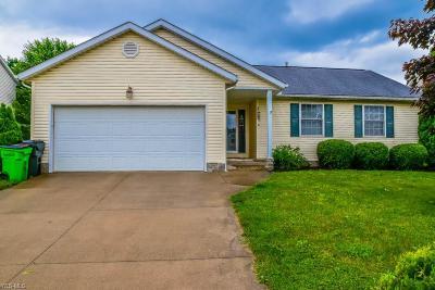 Massillon Single Family Home For Sale: 344 Shaw Avenue