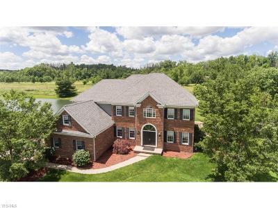 Medina Single Family Home For Sale: 5440 Champion Creek Boulevard