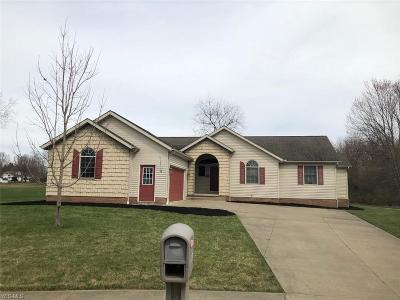 Massillon Single Family Home Active Under Contract: 1338 Bethann Avenue