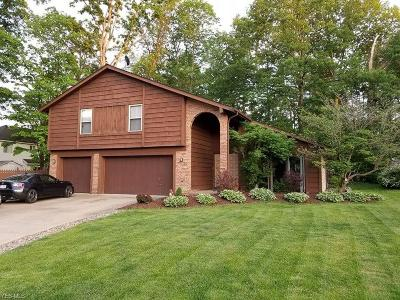 Strongsville Single Family Home For Sale: 16957 Hunting Meadows Drive