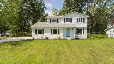 Strongsville Single Family Home For Sale: 16314 Prospect Road