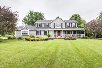 Medina Single Family Home For Sale: 3817 W Sweet Briar Drive