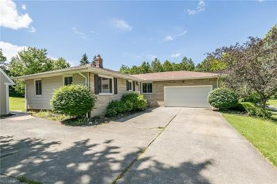 Hinckley Single Family Home Active Under Contract: 1582 Skyland Drive