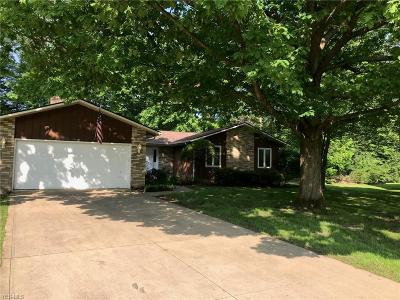 Solon Single Family Home For Sale: 31460 Crabtree Lane