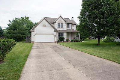 Medina County Single Family Home For Sale: 280 Blue Spruce Court