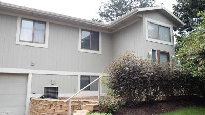Painesville OH Condo/Townhouse For Sale: $125,000