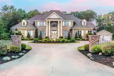 Lake County Single Family Home For Sale: 8769 Ascot Place