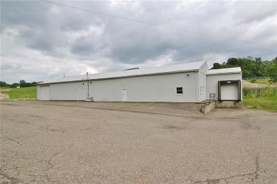 Muskingum County Commercial Lease For Lease: 1310 Adamsville Road