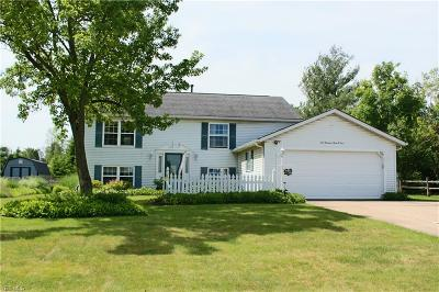 Twinsburg Single Family Home For Sale: 10304 Belleau Drive