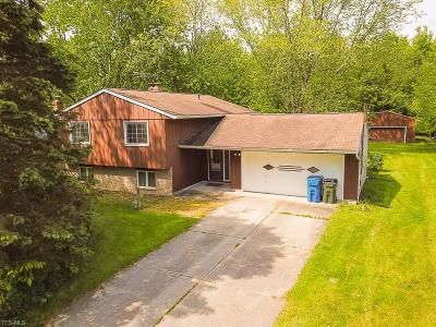 North Ridgeville Single Family Home For Sale: 9396 Island Road