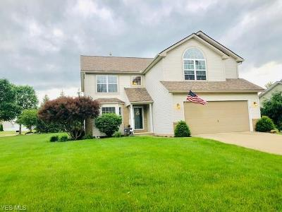 Medina County Single Family Home For Sale: 709 Saratoga Trail