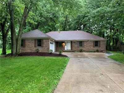 Westlake Single Family Home For Sale: 29200 Fall River Drive
