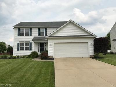 Lorain County Single Family Home For Sale: 9253 Calista Drive
