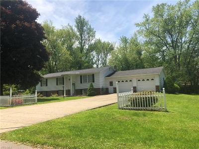 Conneaut Single Family Home For Sale: 505 Benjamin Street