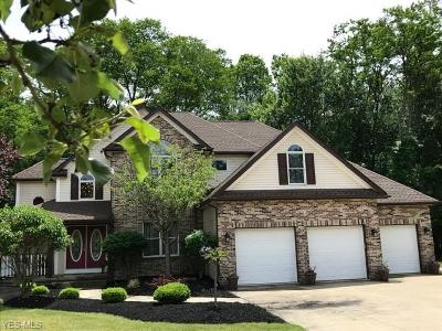 Eastlake Single Family Home For Sale: 864 Cove Court