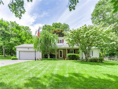 Copley Single Family Home For Sale: 790 Wallwood Drive