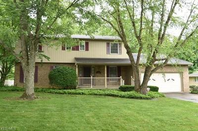 Youngstown Single Family Home For Sale: 1240 Barbie Drive